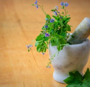 7 reasons why trusting Nature is better than Chemicals for Medicines